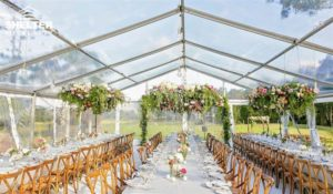 Clear Top - SHELTER High Peak Marquee - Top Tent - Wedding Gazebo - Party Canopies - Transparent Wedding Hall -003